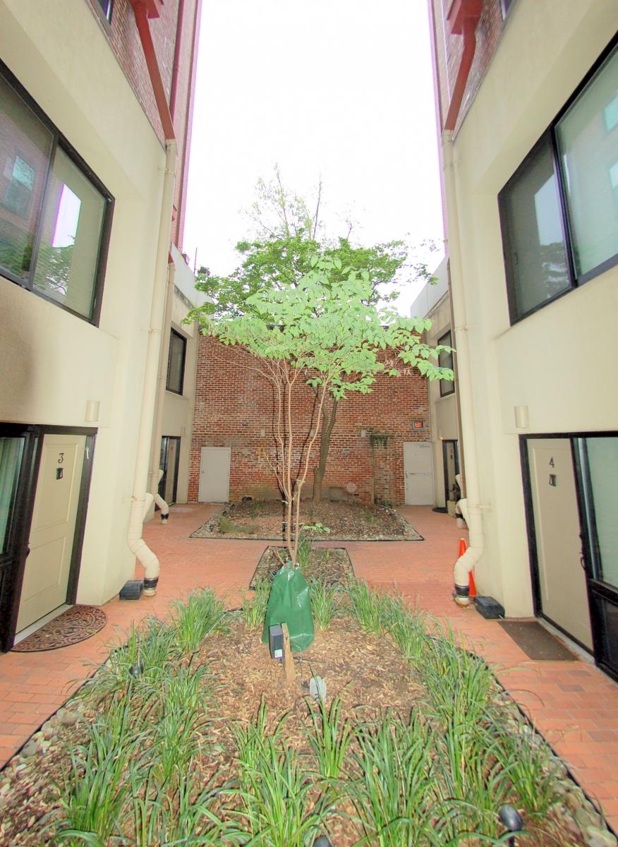 1615QStNW#907-11-Courtyard
